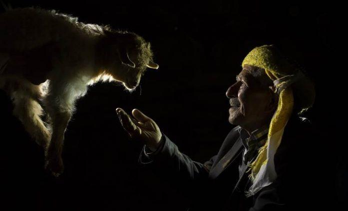 """Sarı Kareler Fotoğraf Yarışması'nda ödüller sahiplerini buldu Vakıf Emeklilik' in öncülüğünde bu yıl 7'incisi düzenlenen """"Sarı Kareler Fotoğraf Yarışması'nda dereceye giren yarışmacılar ödüllerine kavuştu. Sarı Kareler Fotoğraf Yarışması'nda birincilik ödülü Tokat'tan Süleyman Üzümcü'ye, ikincilik ödülü Ordu'dan Necmettin Güney'e, üçüncülük ödülü ise Trabzon'dan Meral Yeşilçiçek'e verildi. Detaylar Patron Haber'de."""
